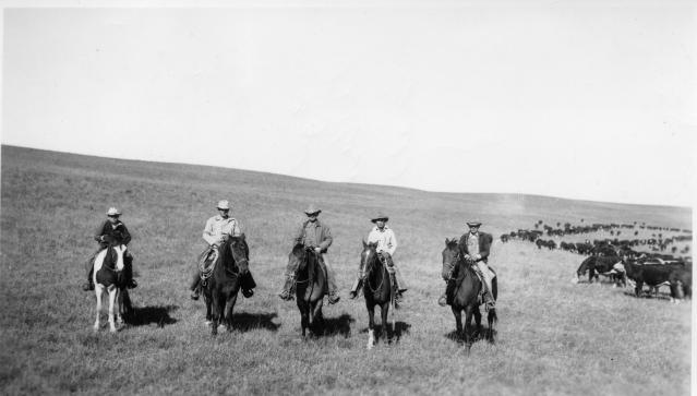 Davis Ranch Cowboys