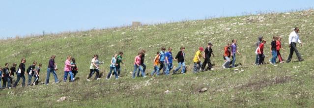 WILDFLOWER WALK ON MOUNT MITCHELL